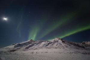 Tromsoe (6)