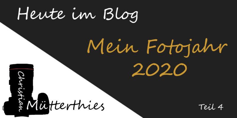 (4) Mein Fotojahr 2020